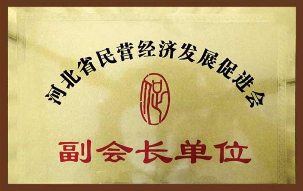 河北省民营经济发展促进会副会长单位