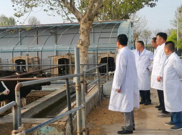 乌金石新闻:公司领导应邀到河北省农业科学院考察合作插图1