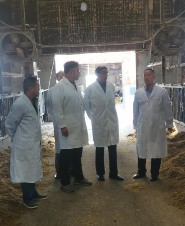 乌金石新闻:公司领导应邀到河北省农业科学院考察合作插图2