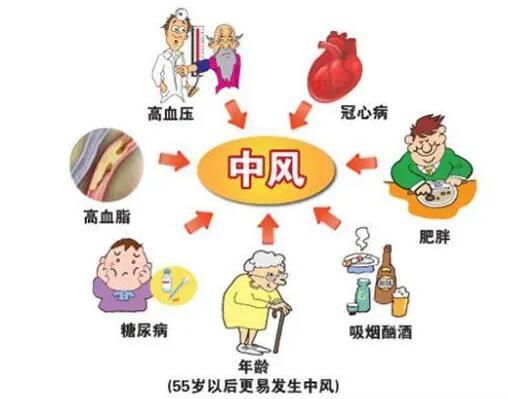 【世界预防中风日】8张动图揭秘血管堵塞全过程!要想不堵做好这几点!
